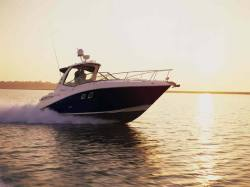 Sea Ray Boats 310 Sundancer Cruiser Boat