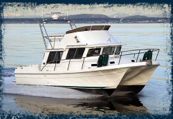 2014 - Sea Sport - Pacific 3200