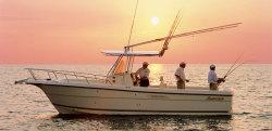 2012 - Shamrock Boats - 270 Open