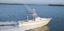 2012 - Shamrock Boats - 246 Adventurer