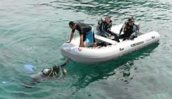 2012 - Silver Marine Boats - Calypso 360