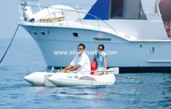 2012 - Silver Marine Boats - Angel 250