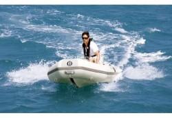 2012 - Silver Marine Boats - Nemo 275