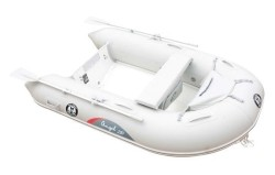 2018 - Silver Marine Boats - Angel 250