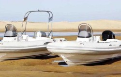 2019 - Silver Marine Boats - Phoenix 610