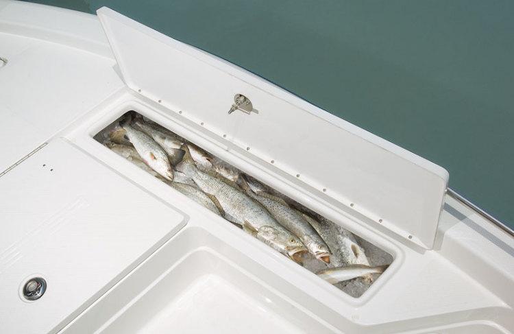 l_fish-box