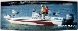 Skeeter Boats - ZX 20 BAY