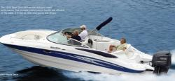 2010 - Southwind Boats - 2600 SD