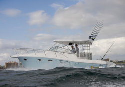 2009 - Sport-Craft Boats - 31 Sportfisherman