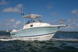2009 - Sport-Craft Boats - 261 Walkaround