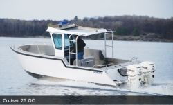 2019 - Stanley Boats - Cruiser 23 Hard Top