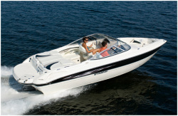 2010 - Stingray Boats - 225LR