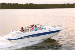 2010 - Stingray Boats - 235CR