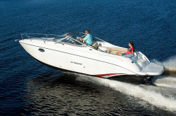 2017 - Stingray Boats - 250CR