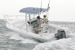 2010 - Triumph Boats - 215 CC