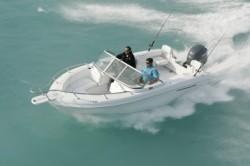 2010 - Triumph Boats - 195 DC