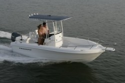 2010 - Triumph Boats - 195 CC