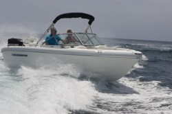 2010 - Triumph Boats - 191 Fish  Ski
