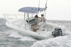 2011 - Triumph Boats - 215 CC
