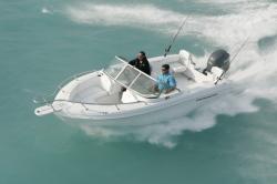 2011 - Triumph Boats - 195 DC
