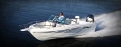 2012 - Triumph Boats - 195 DC