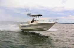 2013 - Triumph Boats - 215 CC