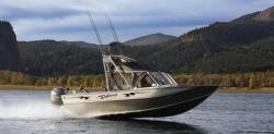 2010 - Weldcraft Boats - Rebel 202