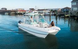 2020 - World Cat Boats - 230 DC
