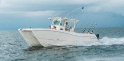 2020 - World Cat Boats - 320 CC