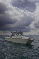 2011 - World Cat Boats - 290EC Express Cabin