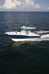 2012 - World Cat - 290 CC Center Console