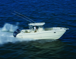 2013 - World Cat Boats - 330 TE Tournament Edition