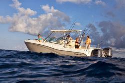 2014 - World Cat Boats - 295 DC Dual Console
