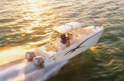 2015 - World Cat Boats - 270 TE Tournament Edition