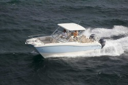 2017 - World Cat Boats - 255 DC Dual Console