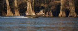 2017 - Xpress Boats - H16DB