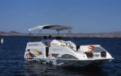 2017 - Advantage Boats - 22- Party Cat MX