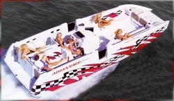 Advantage Boats 28- Party Cat XL High Performance Boat