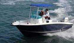 2015 - Allmand - 21 Fishing Hardtop