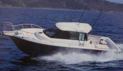 2013 - Allmand - 850 Fishing