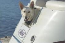 l_Aloha_Pontoon_Boats_-_PS_220_2007_AI-253192_II-11524013