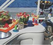 l_Aloha_Pontoon_Boats_-_PS_290_Bimini_Trp_Tunnel_2007_AI-253166_II-11523559
