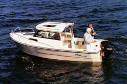 2009 - Arima Boats - Sea Ranger 19 Hard Top