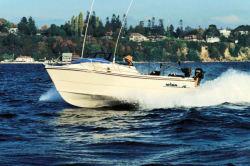 2010 - Arima Boats - Sea Chaser 17