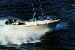 2011 - Arima Boats - Sea Chaser 17