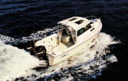 2011 - Arima Boats - Sea Ranger 19 Hard Top