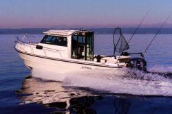 2011 - Arima Boats - Sea Ranger 21 Hard Top
