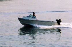 2011 - Arima Boats - Sea Chaser 19 Fish On