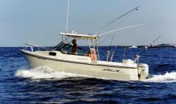 2013 - Arima Boats - Sea Legend 22