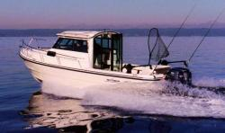 2013 - Arima Boats - Sea Ranger 21 Hard Top